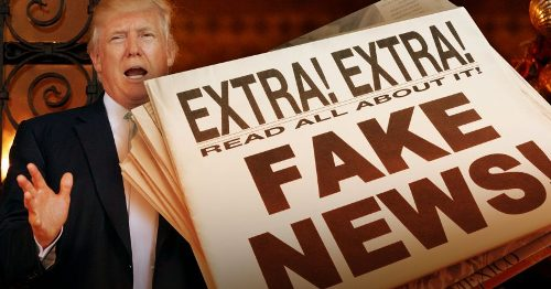 Especialistas criam ONG para combater fake news
