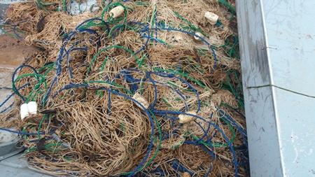 PMA de Porto Murtinho e Jardim apreendem 300 metros de redes de pesca e espinheis no rio Apa na fronteira