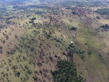 PMA de Jardim autua proprietária rural por desmatamento ilegal de 5 hectares