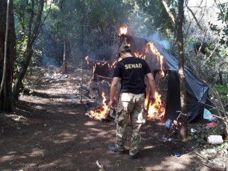 Paraguai destrói 107 acampamentos com 318 toneladas de maconha na fronteira