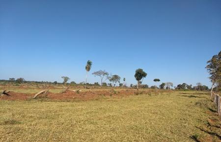 PMA de Jardim autua fazendeiro em R$ 9,8 mil por desmatamento ilegal de duas áreas