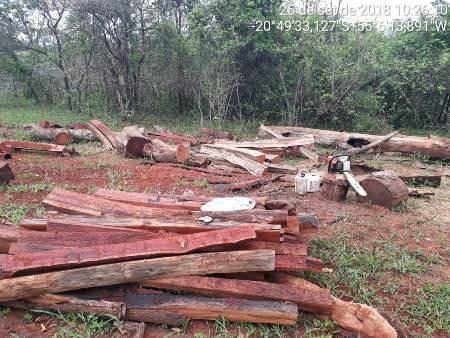 PMA autua infrator em R$ 2 mil por exploração de madeira com uso de motosserras ilegais