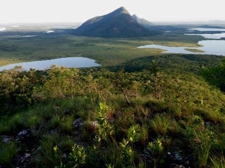 Exposição fotográfica online celebra o Dia do Pantanal