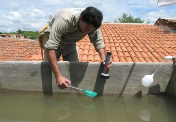 Bela Vista registrou 13 casos de dengue entre janeiro é fevereiro