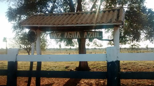 Fazenda de 2.000 hectares vai a leilão em Bela Vista